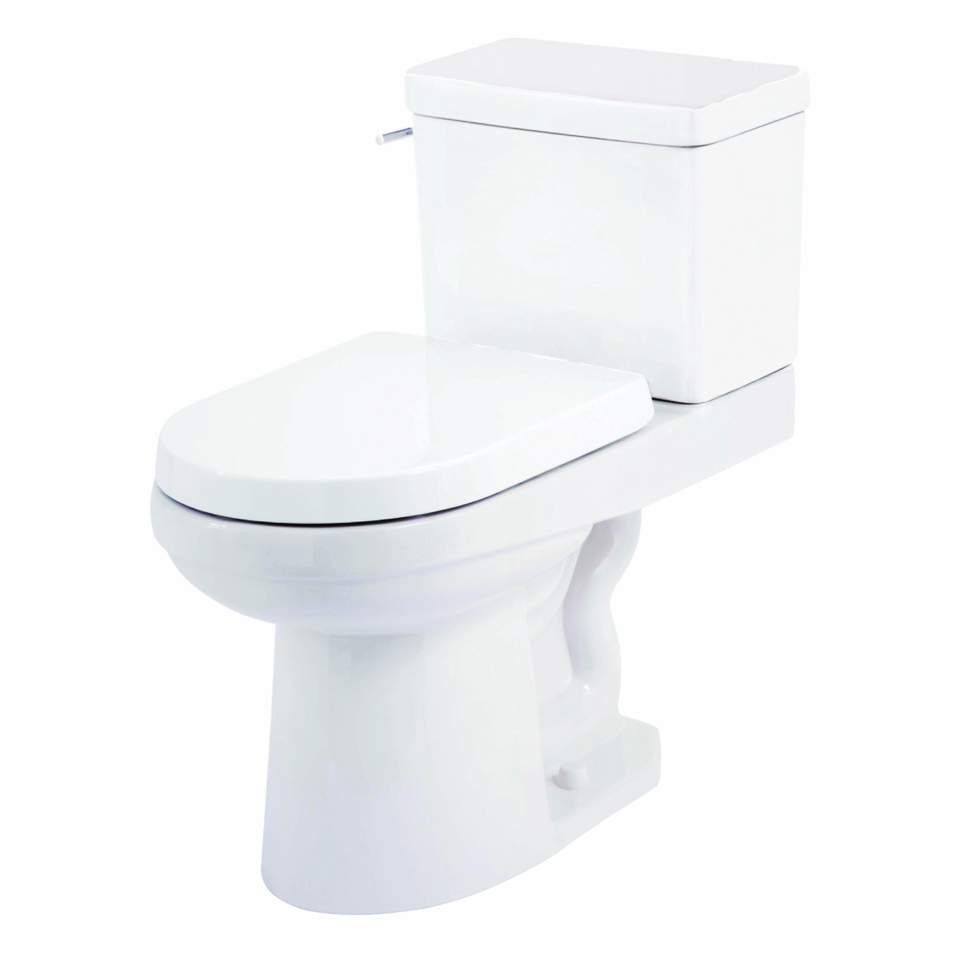 Fixtures Accessories Toilets Bidets Toilet Bowl Only Psc